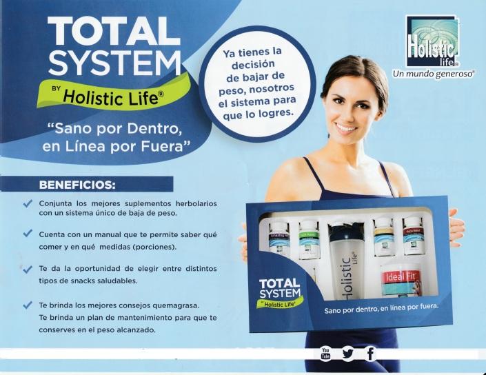 Total sistem