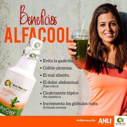 AlfaCool. 01