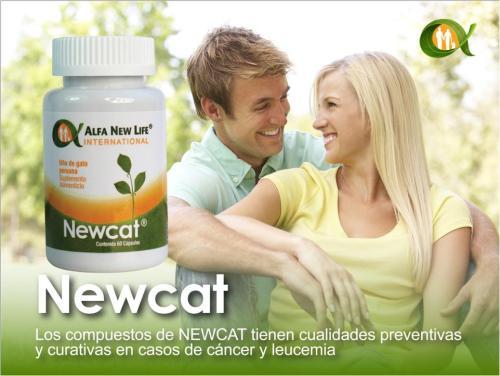 NewCat. 04