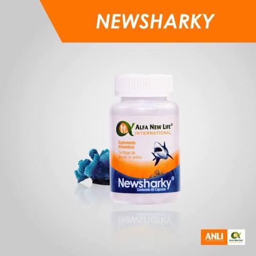 NewSharky. 01